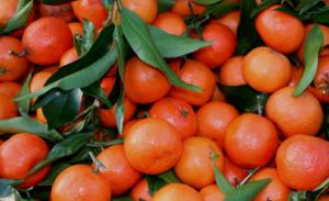 Mandarines : ne vous contentez pas que de les manger…